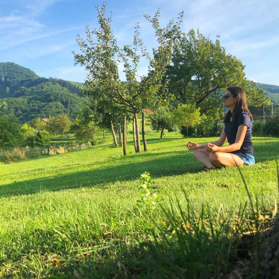 Tehnike disanja i joga